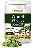 Wheatgrass Powder   8oz   Vegan, Raw, Non GMO & Gluten Free Wheat Grass Superfood Powder   by Horbaach