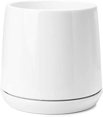 Ceramic Pots for Indoor Plants - POTEY 051301 Indoor Planter 5.7 Inch White Ceramic Plant Pot with Drainage Hole & Saucer for Plants Flower Bonsai (Plant NOT Included)
