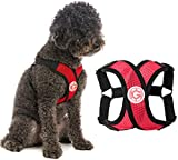 Gooby Dog Harness - Red, Large - Comfort X Step-in Small Dog Harness with Patented Choke-Free X Frame - Perfect on The Go No Pull Harness for Small Dogs or Cat Harness