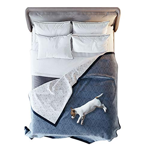 """VICTORIA ORTON 100% Waterproof Blanket - Large Dog & Pet Throw, Reversible, Washable - for Dogs, Cats, Pets & People - Incontinence, Pee & Water Proof (Queen/King Size Bed Cover 90""""x90 Blue, White)"""