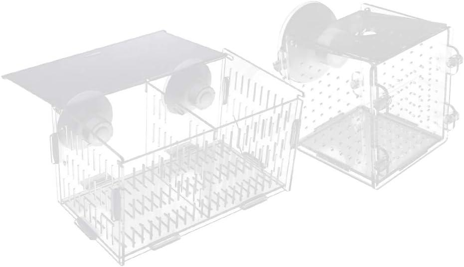 Flameer 2 Pcs Acrylic Transparent Breeding Breeder Isolation Box
