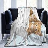 D-M-L - Coperta in pile morbido e caldo peluche, copriletto da viaggio per divano letto, coperta con una tazza di gatto, 127 x 102 cm