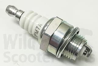 g23lh spark plug