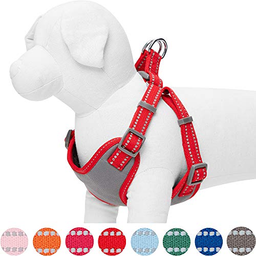Umi. by Amazon - Pastellfarbenes, reflektierendes Hundegeschirr, Brustumfang 56-66 cm, Mohnblumenrot, Medium, verstellbares Geschirr für Hunde