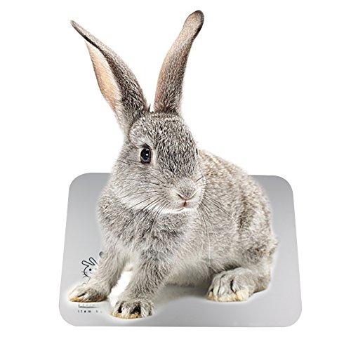 VAKIT ウサギ用品 ひんやりマット アルミボード 冷たい アルミ板 冷却 涼感 ひえひえ爽快 ウサギ モルモッ...