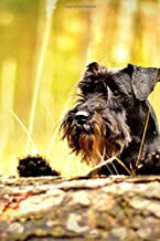 Adorable Black Miniature Schnauzer Puppy Dog Peeking over a Log Journal