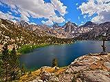 Rompecabezas De 1000 Piezas para Adultos, Juguete Educativo del Parque Nacional Kings Canyon para Niños Y Adultos, Montaje De Madera