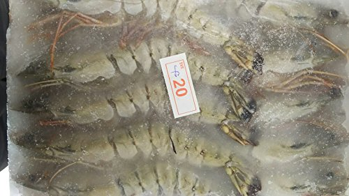 有頭えび 20尾 1.3kg 冷凍