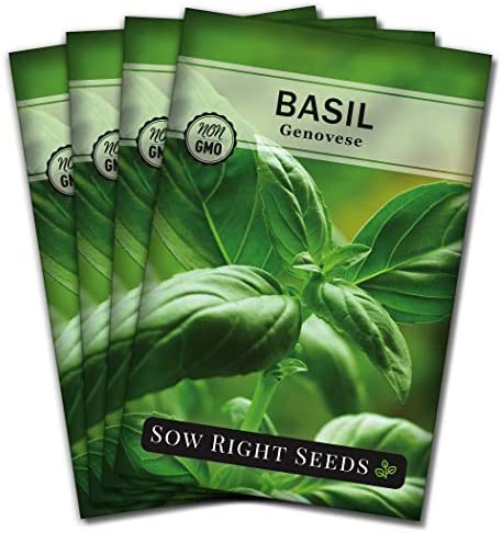 Sow Right Seeds - Genovese Basil Seed for Planting - Heirloom, Non-GMO with Instructions to Plant and Grow a Kitchen Herb Garden, Great Gardening Gift. Minimum of 500mg per Packet. (1)
