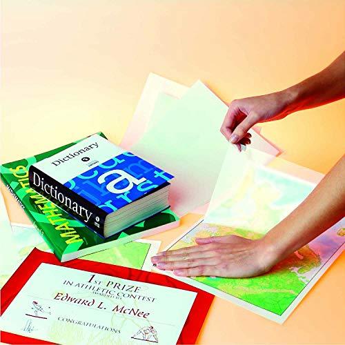 Alpi 00264 - Forro para libros (film extensible, 80 micrones, 50 cm de ancho, 20 m de longitud)