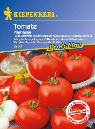 Tomate Phantasia - aromatisch rund