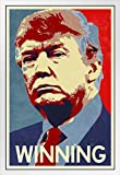 Gerahmtes Poster Donald Trump für den Präsident