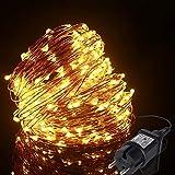ALED LIGHT 20M 200 LEDs LED Lichterkette Warmweiß Kupferdraht, Wasserdicht Außen Lichterketten, Deko Beleuchtung LED Lichterkette Lampenkette...