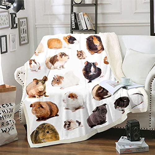 Manta de felpa de conejillo de indias, manta de sherpa para niños de razas de roedores, tamaño Queen, linda manta de forro polar para niños y niñas, dormitorio de niños, manta de cobayas encan