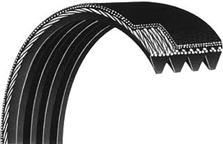 Courroie Striée 560PJ6 dents élastique pour bétonnière/Marque : Looxe > Exigez la Qualité