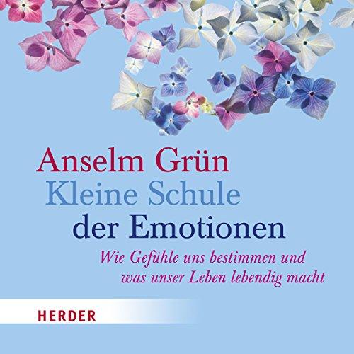 Kleine Schule der Emotionen audiobook cover art