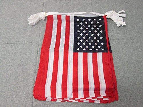 AZ FLAG Guirnalda 12 Metros 20 Banderas de los Estados Unidos 45x30cm - Bandera Americana - USA - EE.UU 30 x 45 cm - BANDERINES