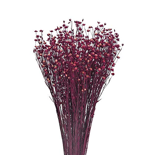 NAUHUAA 1PZ Bouquet di Fiori Secchi Naturali Erba Secca di Fiori Secchi di Acacia Viola per la Decorazione Domestica Matrimonio Decorazione Floreale Invernale Ristorante Cafe