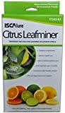 ISCA Technologies Citrus Leafminer Starter Kit, 3 Traps & 3 Lures per Box