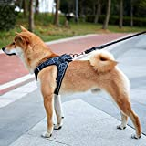 Fooubaby Step in Vest Harness Elastic weaving Soft Padded Mesh for Small Medium Dogs Cats with High Reflective Edges, Easy to wear and take Off Machine Washable (L, Gray)