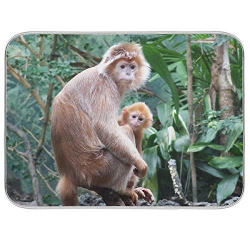 Tapis d'égouttoir pour comptoir de cuisine Motif famille de singes 45,7 x 61 cm Peut être plié