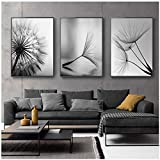 LIPENGYU Imprimir en Lienzo Dandelion Flower Canvas Painting Modern Black White Art Print Picture Decoración para el hogar Living Room Abstract Wall Poster 50x70cmx3pcs Sin Marco