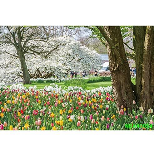 Fondos de fotografía escénica de árboles de Pradera de jardín de Primavera Natural Fondos fotográficos Personalizados para Estudio fotográfico A12 3x2,2 m