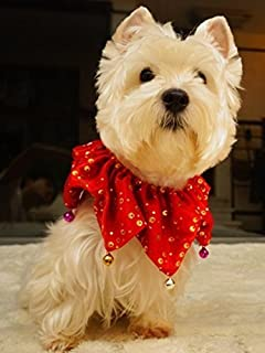 Lanyarco Bling Pet Holiday Accessories Dog Christmas Collar with Bells