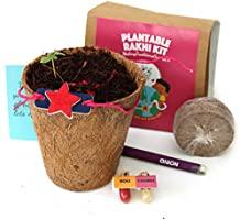 bioQ Eco Friendly Rakhi containing Seeds | Includes Coco Pot, Coco Peat, Roli & Chawal | Grow Plants from Rakhi |...