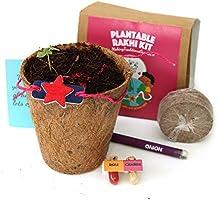 bioQ Eco Friendly Rakhi containing Seeds | Includes Coco Pot, Coco Peat, Roli & Chawal | Grow Plants from Rakhi |...