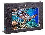 Ulmer Puzzleschmiede - Puzzle 'Tortuga marina': Puzzle de 1000 piezas - Motivo de rompecabezas de una tortuga marina como una colorida toma submarina