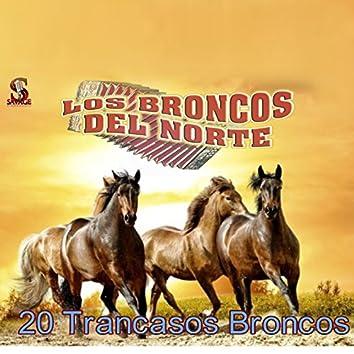 20 Trancasos Broncos