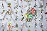 Peter Rabbit Fabric, Beatrix Potter Fabric, Fabric by The Yard Peter Rabbit, Face Mask Fabric, Fabric Baby Blankets, Cotton Fabric, Craft (1 Yard (36' x 58'))