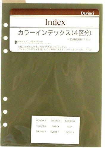 レイメイ藤井 ダヴィンチ カラーインデックス A5 DAR508