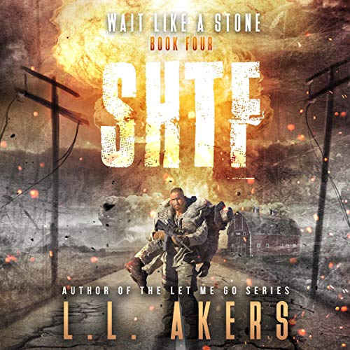 Wait like a Stone: A Post-Apocalyptic Thriller (The SHTF Series, Book 4)