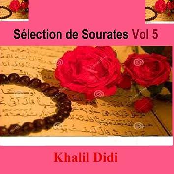 Sélection de Sourates, Vol. 5 (Quran - Coran - Islam)