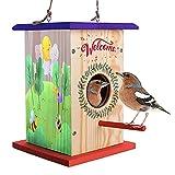 LATI Toys Premium Birdhouse Kit