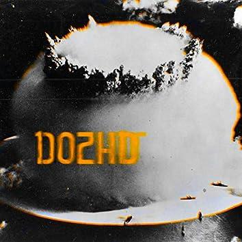 Dozhd'