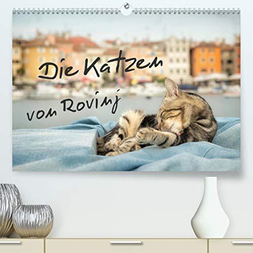 Die Katzen von Rovinj(Premium, hochwertiger DIN A2 Wandkalender 2020, Kunstdruck in Hochglanz): Der ultimative Katzen-Straße von Rovinj in Kroatien! (Monatskalender, 14 Seiten ) (CALVENDO Tiere)