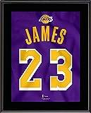 LeBron James Los Angeles Lakers 10.5' x 13'...