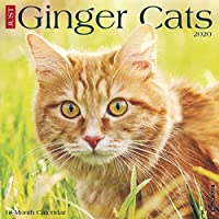 Ginger Cats 2020 Calendar