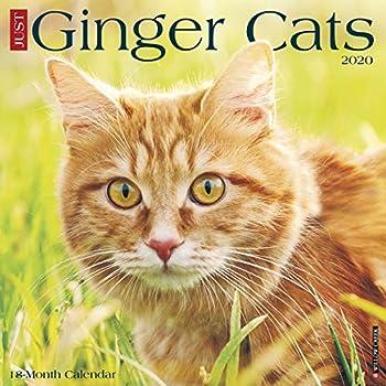 cat wall calendar 2020