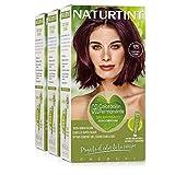 Naturtint Coloración 4M Castaño Caoba | Tinte sin Amoniaco | 100% Cobertura de canas e Hidratación | Ingredientes y Aceites Vegetales | Color Natural y Duradero | Pack de 3
