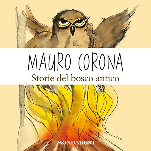 Storie del bosco antico audiobook cover art
