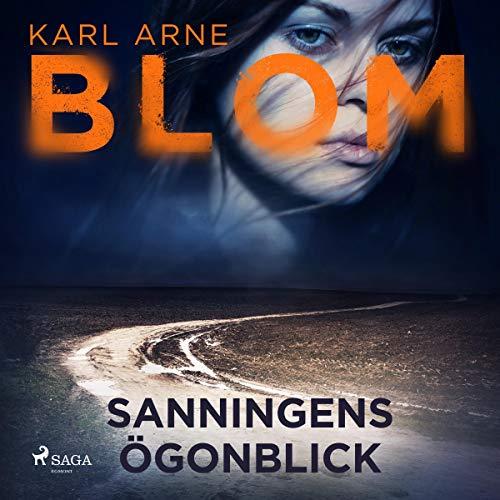 Sanningens ögonblick audiobook cover art