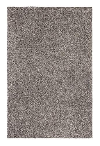 andiamo Fußmatte Samson Türmatte Sauberlaufmatte für Innen- und überdachter Außenbereich waschbar mit rutschfester Unterseite 100 x 150 cm granit