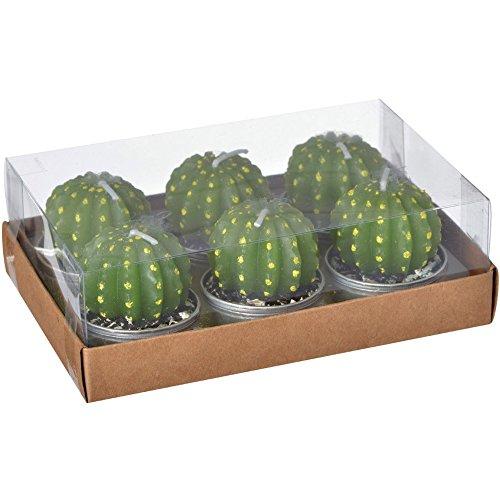 La Chaise Longue 36-1H-202 Bougies Cactus ronds verts Petit modèle Set de 6 Cire et aluminium D4 x H4,5 cm