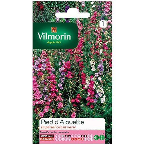 Vilmorin - Sachet graines Pied d'Alouette Impérial géant varié