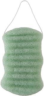 Lady Green Konjac - Esponja para un cuerpo maravilloso aloe vera, color rosa