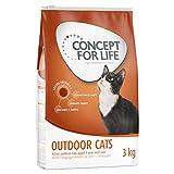 Concepto para la vida al aire libre gatos Un alimento saludable para gatos
